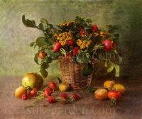Вышивка лентой фруктов